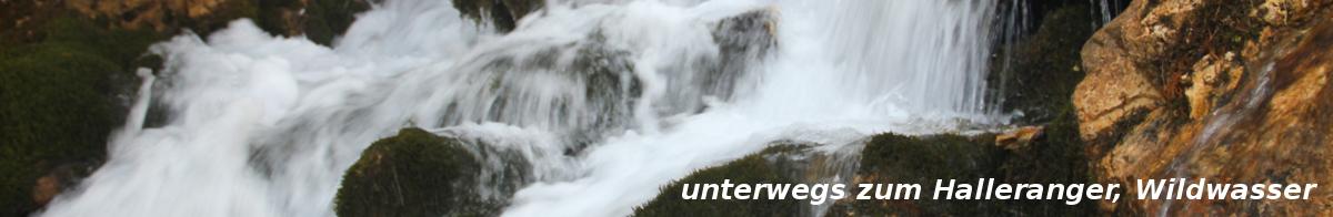 halleranger-wildwasser-IMG_2777-1200x196px